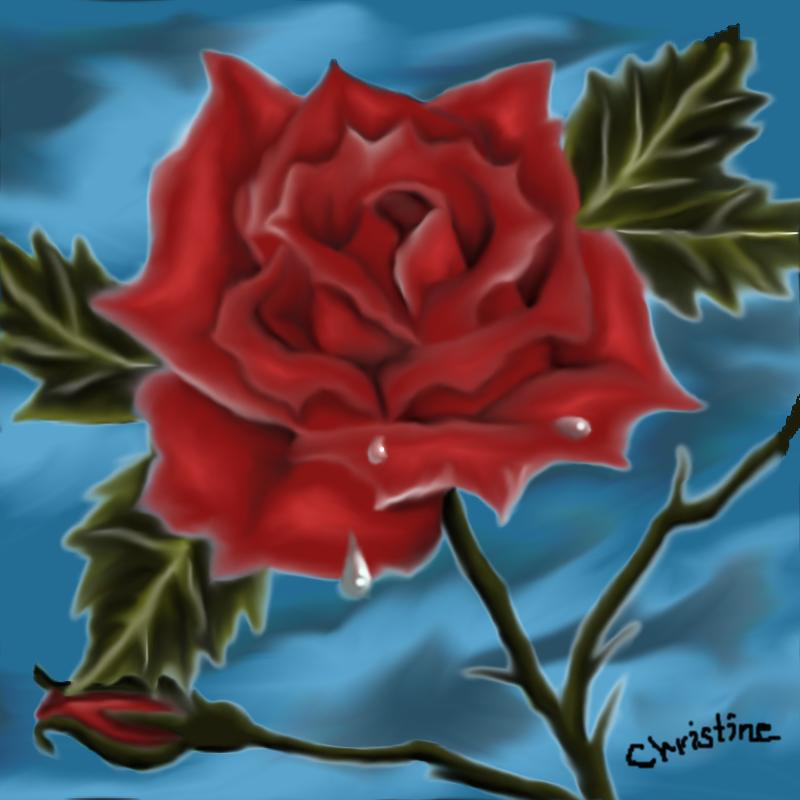 treat me like a rose by scayne