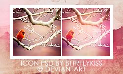 Little bird - psd by BTTRFLYKISS