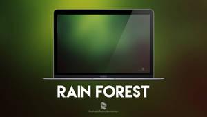 Rain Forest by rashadisrazzi