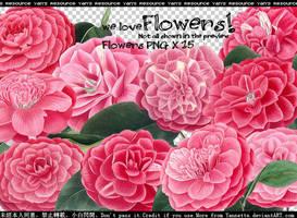 we love flower PNGs by Yannettee