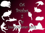 Cat Brushes 2
