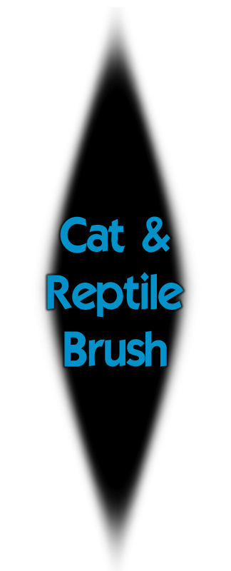Cat and Reptile Eye Brush by JoeleneyBeaney