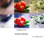 action no.9- SPRING FEELING