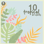 Tropical Brushes
