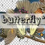 butterflies by faysensei