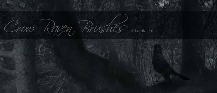 Larafairie-crowravenbrushes