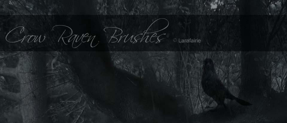 Larafairie-crowravenbrushes by larafairie-stock