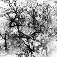 Veins Pack 1.1 by PaldimoMedia