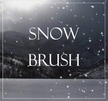 snow brush by WCS-Wildcat