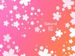 Sakura Photoshop Shape