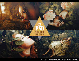 PSD 21: Summer Breath by William-BR