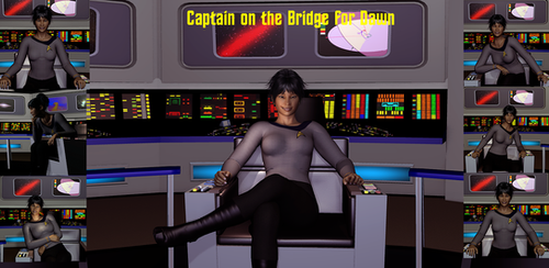 Captain on the Bridge - Dawn