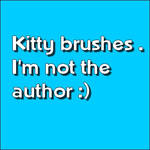 Kitty brushes