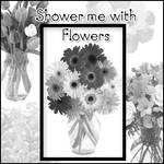 Shower me with Flowers