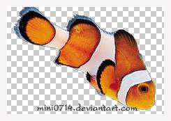 fish001 by mini0714