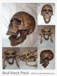 Skull stock pack