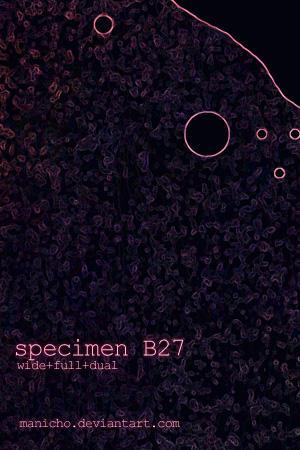 Specimen B27 by mauricioestrella