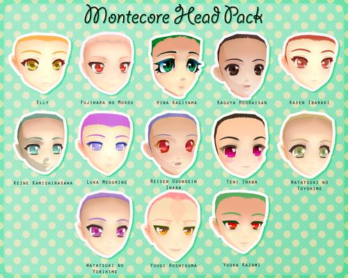 Montecore Head Pack DL