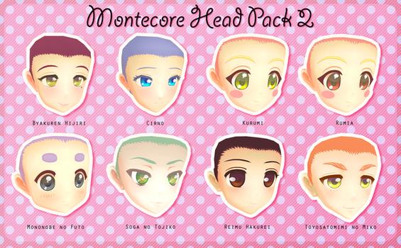 Montecore Head Pack 2 DL