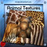 High Reslolution Animal Textures