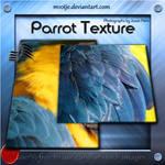 High Reslolution Parrot Texture