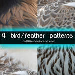 4 Feather Pattern02