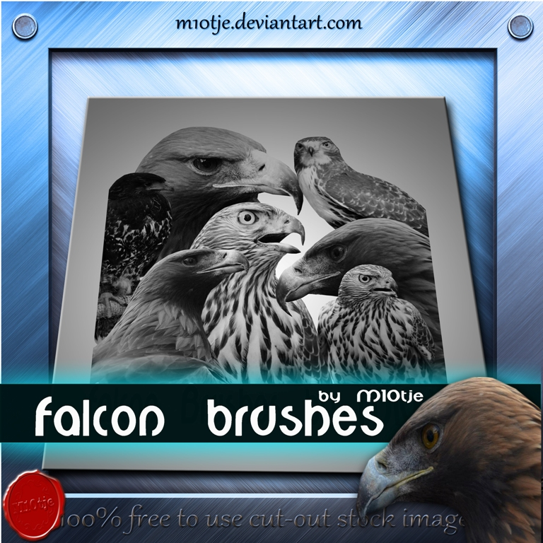 Falcon brushes by m10tje by M10tje