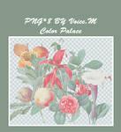flower fruit png