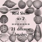 Real shells set 2