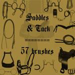 Saddles and Tack
