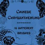 Chinese Chrysanthemums