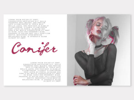 PSD Template 04 | Conifer