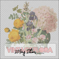20 Png Vintage Flora Items.