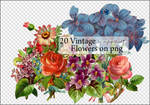 Vintage Flowers on Png.