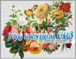 PNG RANDOM 003