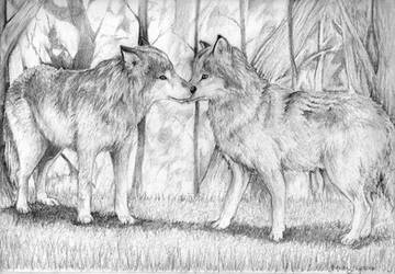 Wolves by LetLovePrevail