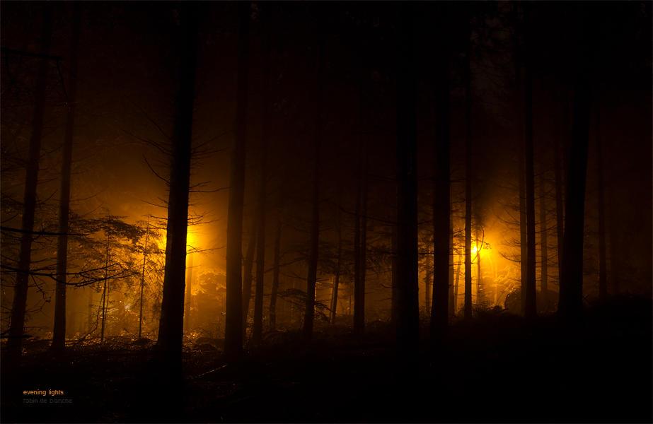 evening lights by ladyrapid