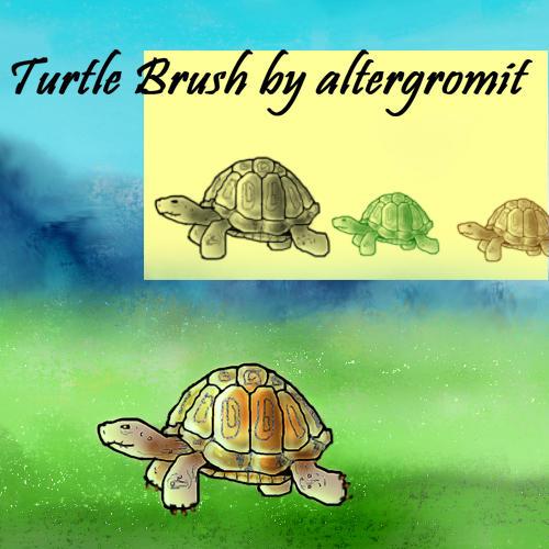 Tortoise Brush by altergromit