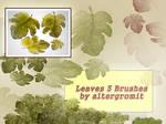 Leaves - 3 Brushes