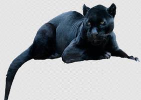 Jaguar by MadSDesignz