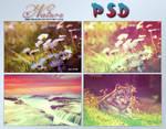 Nature PSD