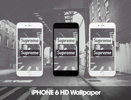 Supreme iPhone 6 HD Wallpaper