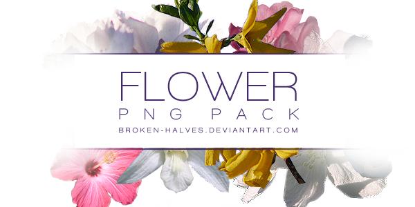 6 FLOWER PNG PACK by broken-halves