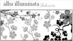 Alba Illuminata 06