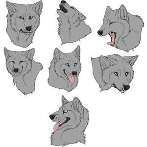 F2U - Wolf/Canine Headshots - Lineart