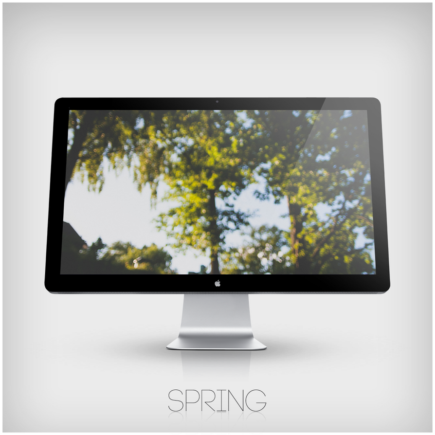 Spring Wallpaper by zomx