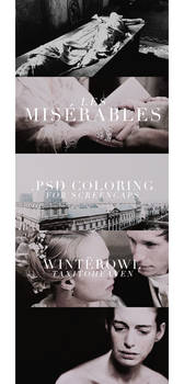 Psd coloring, 'Les Miserables'   Winterowl.