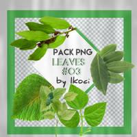 Leaves#003