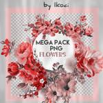 Mega pack flowers