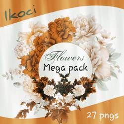 Mega pack flowers || 27 PNG's